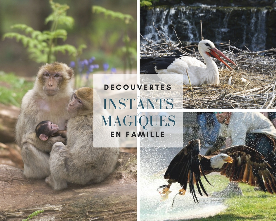 Parcs Animaliers en Alsace