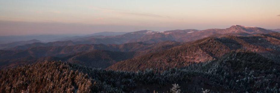 Découverte de la Forêt Noire en randonnée